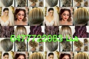 Hanna Salon 2