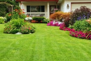 colorslandscaping1572873687